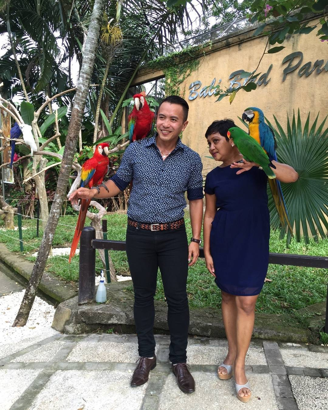 wisata bali bird park