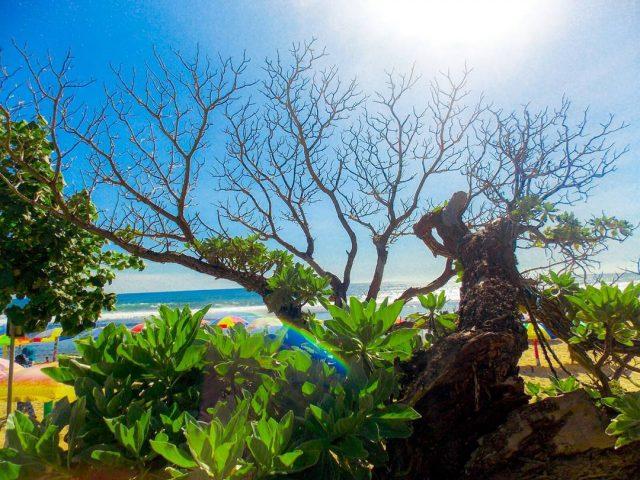 Pantai pok tunggal jogja