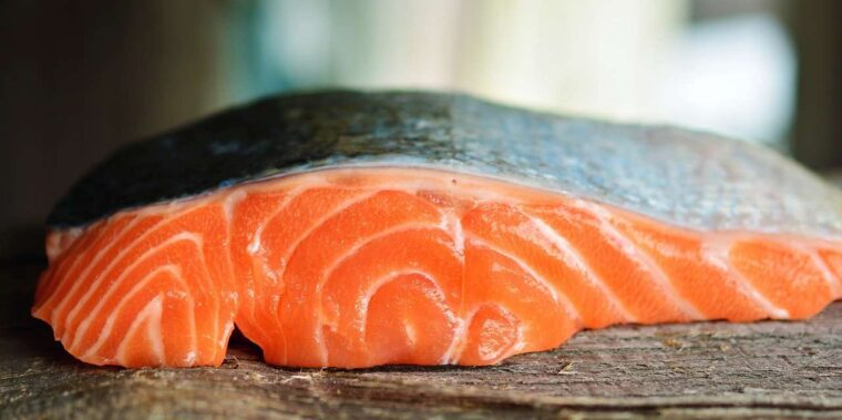 Gambar daging salmon